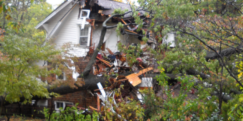 Case Study: A One-Stop Solution to Water Damage